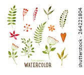 floral set with watercolor... | Shutterstock .eps vector #264221804