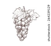 Hand Drawn Grapes Vintage...