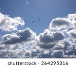 Backlit Clouds And Birds