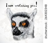 Lemur Poster  With Orange Eyes...