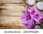pink orchid with buds. greeting ... | Shutterstock . vector #264393680
