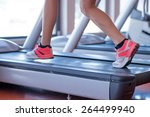 fit female legs on a treadmill...   Shutterstock . vector #264499940