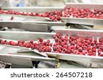 frozen red raspberries in... | Shutterstock . vector #264507218