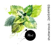 kitchen herbs and spices banner.... | Shutterstock .eps vector #264549983