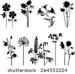 floral collection  | Shutterstock .eps vector #264551024