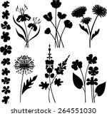 floral collection  | Shutterstock .eps vector #264551030