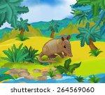 cartoon scene   wild south... | Shutterstock . vector #264569060
