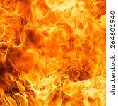 blaze fire flame texture... | Shutterstock . vector #264601940