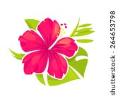 hibiscus flower and palm leaves | Shutterstock .eps vector #264653798