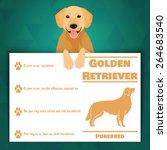Golden Retriever Breed Dog...