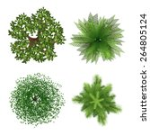 Top View Tree Elements For...