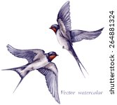 Watercolor Two  Flying Swallow...