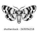 butterfly sketch. detailed... | Shutterstock .eps vector #265056218