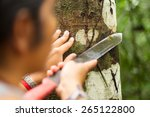 naturalist guide explaining... | Shutterstock . vector #265122800