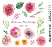 Watercolor Herbs  Ranunculus ...