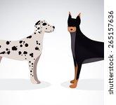 pet design over white... | Shutterstock .eps vector #265157636