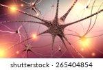 3d. brain  nerve cell  human... | Shutterstock . vector #265404854