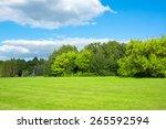 landscape an blue sky | Shutterstock . vector #265592594