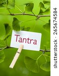 the word  tantra in a ginkgo... | Shutterstock . vector #265674584