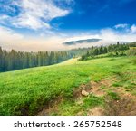 summer landscape. fog from conifer forest surrounds the mountain top in morning light - stock photo