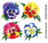 Watercolor Vector Set With...