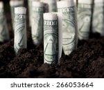 growth concept  growing dollar... | Shutterstock . vector #266053664