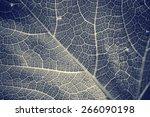 leaves background   Shutterstock . vector #266090198