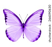 Stock photo beautiful purple butterfly isolated on white background 266090630