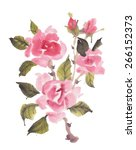 Watercolor  Roses  Isolated On...
