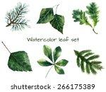 set of watercolor leaves  pine  ... | Shutterstock .eps vector #266175389