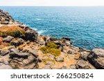 plaza island  galapagos islands ...   Shutterstock . vector #266250824