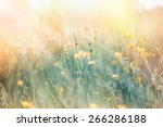 soft focus on illuminated... | Shutterstock . vector #266286188