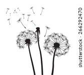 black vector dandelions  | Shutterstock .eps vector #266292470