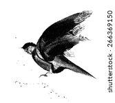 Ink Drawn Flying Bird