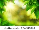 Scenic Nature Background Of...