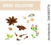 vector collection of watercolor ... | Shutterstock .eps vector #266585576