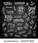 summer calligraphic designs set ... | Shutterstock .eps vector #266597300