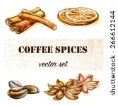 most popular spices used for...   Shutterstock .eps vector #266612144
