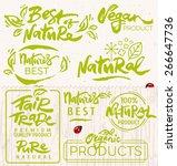 hand drawn calligraphic organic ... | Shutterstock .eps vector #266647736