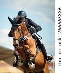 equestrian | Shutterstock . vector #266666336