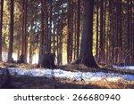 winter forest landscape on a... | Shutterstock . vector #266680940