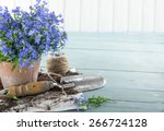 Vintage Garden Tools And Blue...