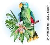 big green amazon parrot and... | Shutterstock .eps vector #266752094