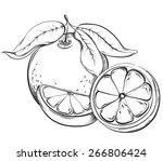 orange. hand drawn fruit.... | Shutterstock .eps vector #266806424