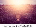 sunny field at summer. retro... | Shutterstock . vector #266961236