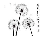 black vector dandelions | Shutterstock .eps vector #267015308