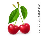 ripe red cherry berries with... | Shutterstock . vector #267035666