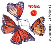 Vector Butterfly Painted In...