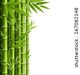 green bamboo grove isolated on... | Shutterstock .eps vector #267082148