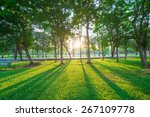Park And Recreation Area In Th...
